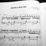 "Primer iz knjige ""Pesma i harmonika"""