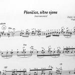 """Primer notnog zapisa iz knjige """"RUBATO PESME - instrumentali za harmoniku"""""""
