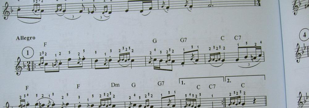 """Knjiga """"Vlaska kola na harmonici"""" - notni primer"""