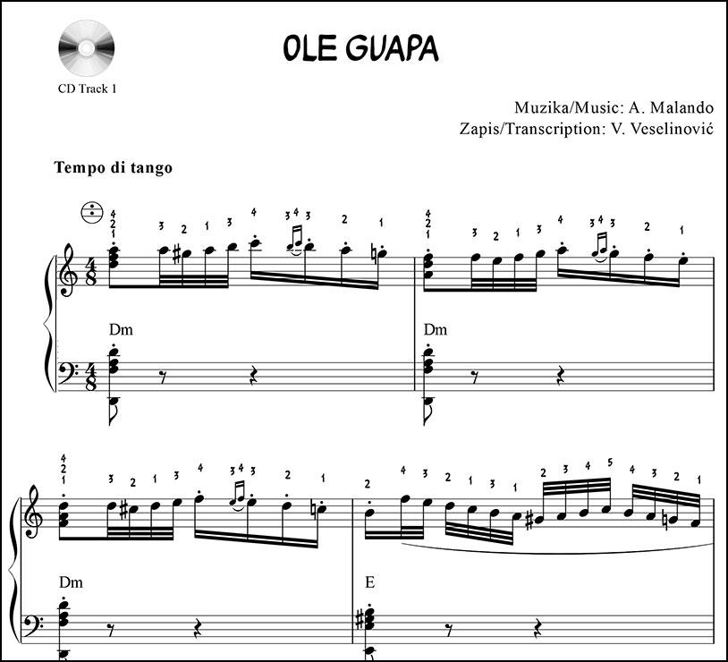 Sa harmonikom oko sveta With accordion around the world
